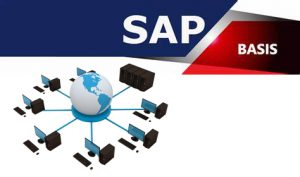 SECURITY, TESTING, GOVERNANCE PROBLEMS WEIGHING YOU DOWN?  Titan's SAP Fractional Consulting Takes the Weight Off!